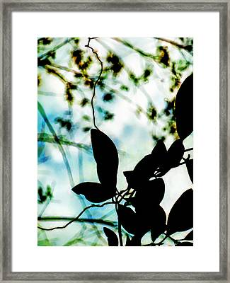 Caught Up In My Own Imagination Framed Print