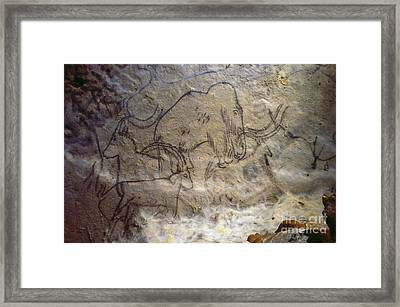 Cave Art - Mammoth And Ibexes Framed Print by Granger