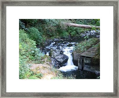 Cedar Creek Framed Print by Monica Cranswick