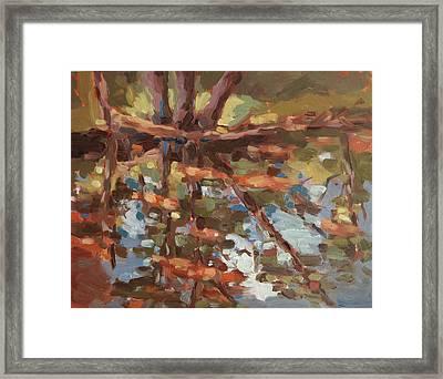 Cedar Creek Reflection Framed Print by Jenny Anderson