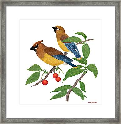 Framed Print featuring the digital art Cedar Waxwing by Walter Colvin