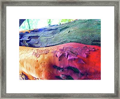 Framed Print featuring the digital art Celebration by Richard Laeton