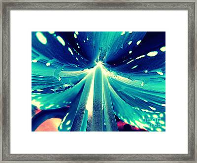 Celestial Radiance Framed Print by Renee Trenholm