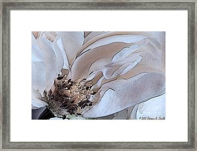 Centerfold Framed Print by Susan Smith