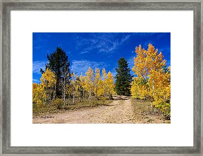 Central City Fall Road Framed Print by Stephen  Johnson
