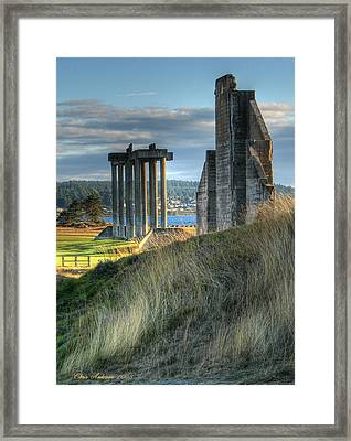 Central Meadow Ruins Framed Print by Chris Anderson