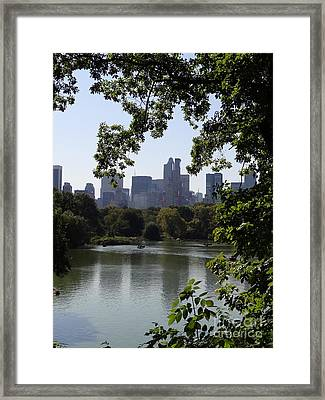 Central Park 35 Framed Print