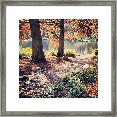 Central Park Early Morning Framed Print