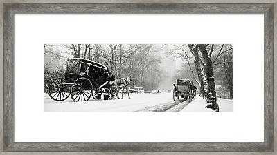 Central Park In Falling Snow Framed Print by Axiom Photographic