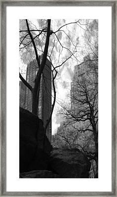 Central Park One Framed Print