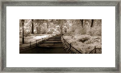 Central Park Path Duotone Framed Print by Christine Hauber