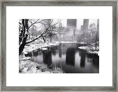 Central Park Snow Framed Print by Vicki Jauron