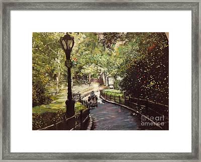Central Park Upper East Side Framed Print by Barry Rothstein