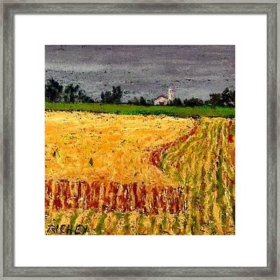 Central Pennsylvania Summer Wheat Framed Print by Bob Richey