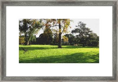 Central To The Garden Framed Print by Douglas Barnard