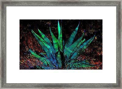 Century Plant Framed Print