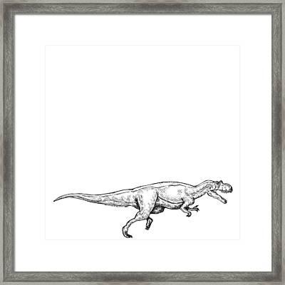 Ceratosaurus - Dinosaur Framed Print by Karl Addison