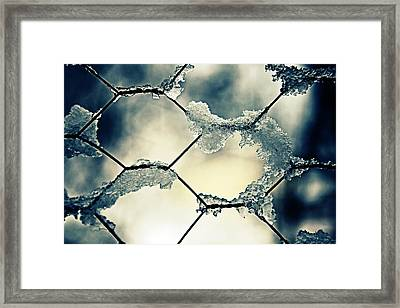 Chainlink Fence Framed Print