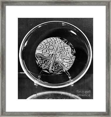 Chanel Plate, 1975 Framed Print by Granger
