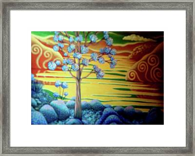 Changing Colours Framed Print by Barbara Stirrup
