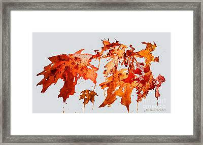 Changing Season Framed Print by Barbara McMahon