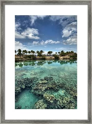 Chankanaab Lagoon Framed Print