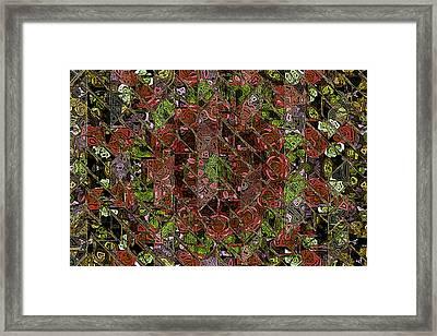 Chaos Framed Print by Steve K