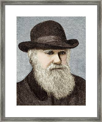 Charles Darwin, British Naturalist Framed Print by Sheila Terry