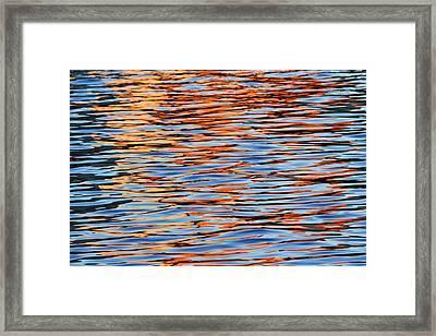 Charles Reflections Framed Print