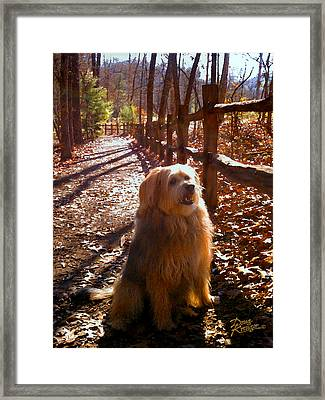 Charlie Framed Print by Doug Kreuger