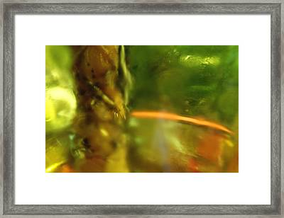 Framed Print featuring the photograph Chartreuse Series Abstract Iv by Ginny Schmidt