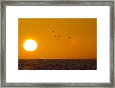 Chasing The Light Framed Print by Betsy Knapp