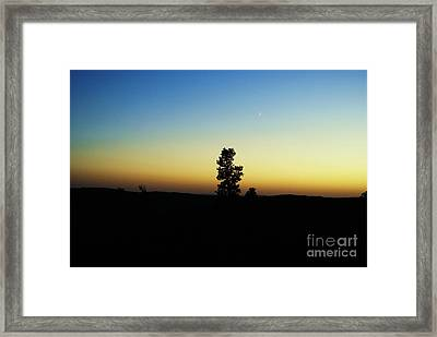 Framed Print featuring the photograph Chasing The Sun by Julie Clements