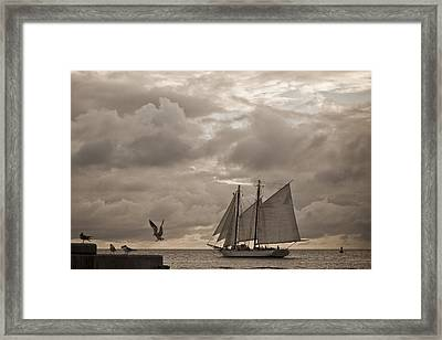 Chasing The Wind Framed Print