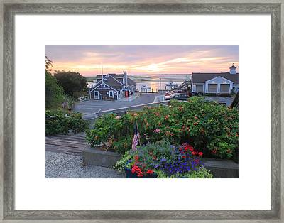 Chatham Fish Pier Summer Flowers Cape Cod Framed Print