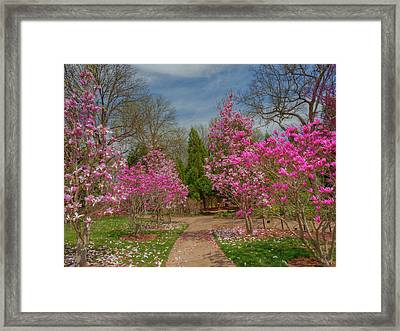 Cheekwood Gardens Framed Print by Charles Warren