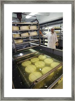 Cheese Production, Drying Room Framed Print