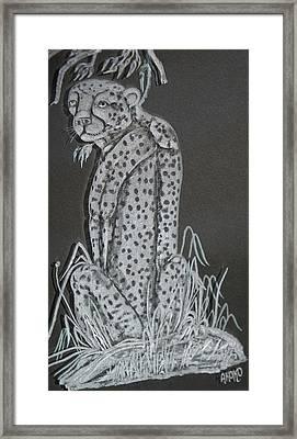 Cheetah Framed Print by Akoko Okeyo