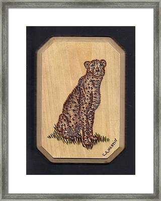Cheetah Framed Print by Clarence Butch Martin
