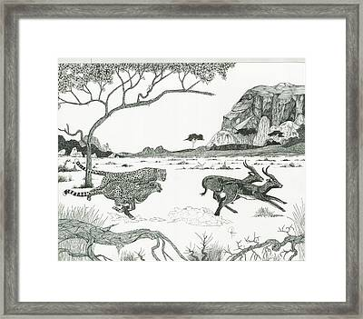 Cheetah Twins  Framed Print by Doug Hiser
