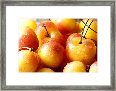 Cherries Framed Print by Blink Images