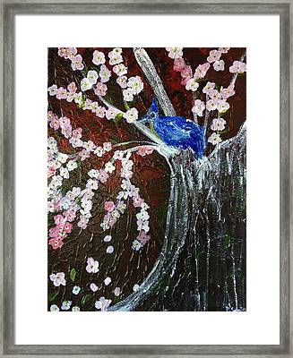 Cherry Blossom And Blue Bird  Framed Print by Pretchill Smith