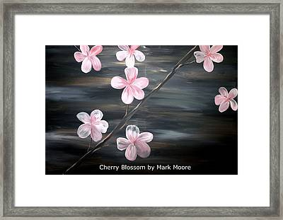 Cherry Blossom By Mark Moore Framed Print by Mark Moore