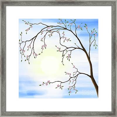 Cherry Blossom Framed Print by Oleksiy Maksymenko