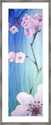 Cherry Blossoms 1 Framed Print by Diane Peters