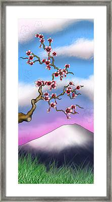 Cherry Blossoms Framed Print by Anthony Citro