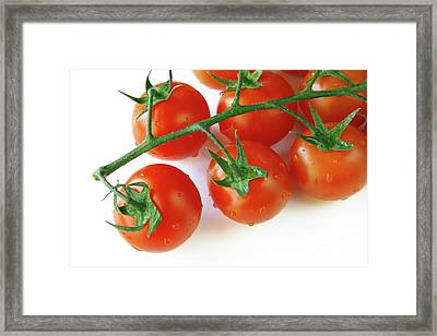Cherry Tomatoes Framed Print by Carlos Caetano
