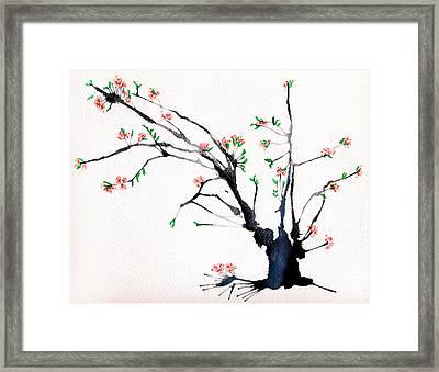 Cherry Tree By Straw Framed Print by Helaine Cummins