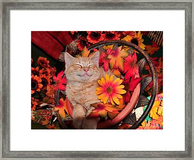 Cheshire Cat Dreaming Of Catching Mice Framed Print by Chantal PhotoPix