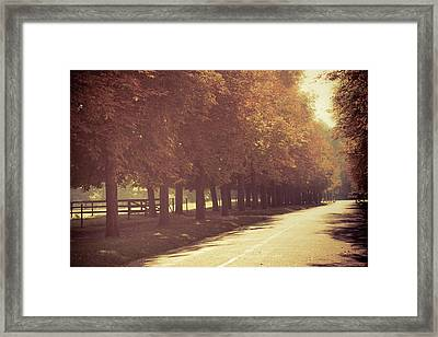 Chestnut Alley Framed Print by Susan Brooks-Dammann